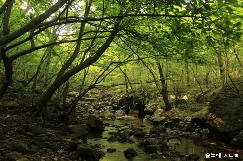 아이들에 멧골에서 마음껏 놀고 숲을 안으면서 자란다면, 아름다운 어른이 되지 않을까 싶습니다.