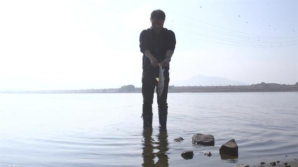 물고기 사체를 들고 나오는 대구환경운동연합 정수근 국장 강정고령보 인근 강가에서 대구환경운동연합 정수근 국장이 물고기 사체를 들고 나오고 있다.