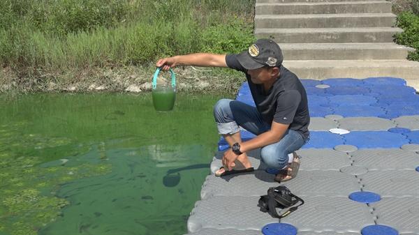 낙동강에서 녹조를 뜨고 있는 대구환경운동연합 정수근 국장 대구환경운동연합 정수근 국장이 낙동강에서 녹조물을 뜨고 있다.