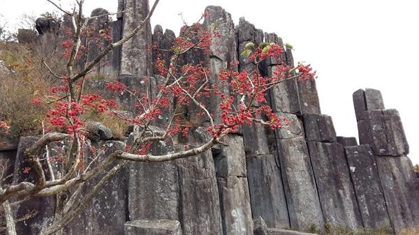 서석대와 함께 천연기념물로 지정된 입석대. 2017년 4월, 유네스코는 무등산의 지리적 경관적 가치를 높이 평가하여 '세계 지질공원'으로 지정하였다. 제주도 한라산과 청송의 주왕산에 이어 국내에서 세 번째로 전세계가 인정한 산이 되었다