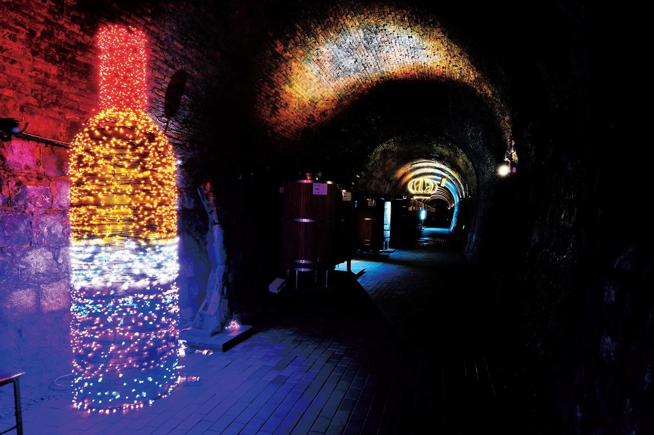 네온사인으로 만든 포도주병이 빛나는 와인터널.