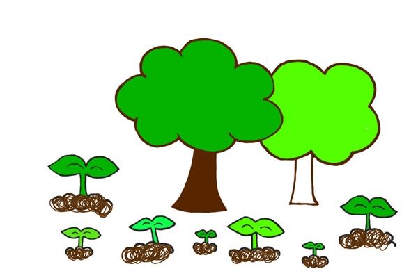 '시민기자'라는 씨앗을 뿌리고 싹을 틔우는 일은 지금 이 순간에도, 어디서든 계속 진행 중일 거다. 손그림 금경희, 채색 이다은.