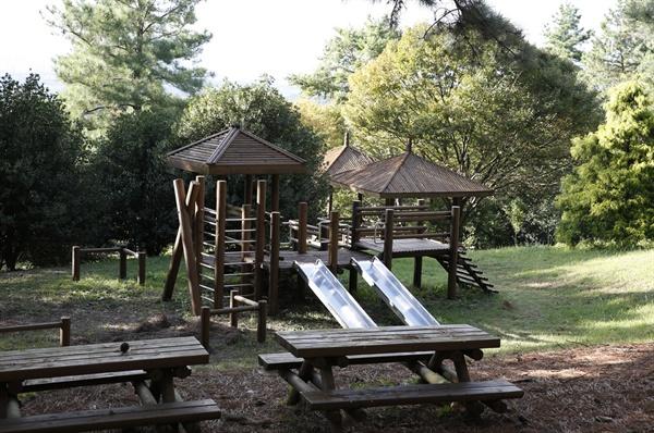 빛가람 치유의 숲에 들어서 있는 어린이 놀이터. 어린아이들이 숲속에서 맘껏 뛰놀 수 있도록 하고 있다.
