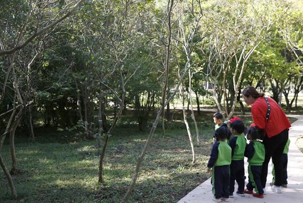 빛가람 치유의 숲을 찾은 유아들. 무장애 나눔숲길을 걷던 아이들이 청설모를 발견하고 한참동안 서서 바라보고 있다.