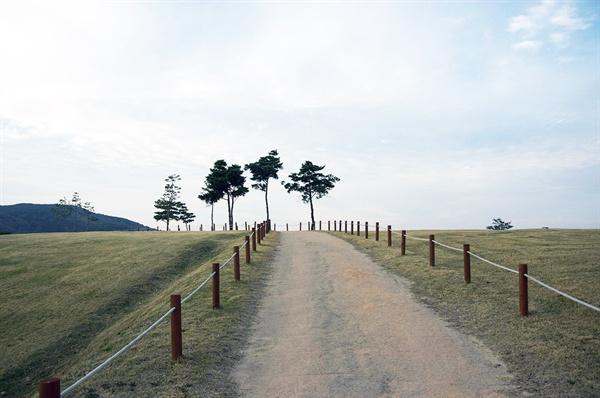 야트막한 언덕으로 오르는 완만한 곡선의 길과 울타리, 가끔 밋밋한 고분의 행렬에 악센트를 찍는 소나무가 사적지 풍경의 특징이다.(2017년 11월)