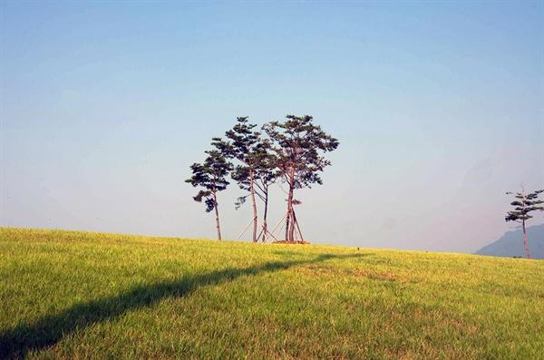 가끔 오르막길을 오르다 문득 고개를 들면 고분과 소나무의 앙상블과 함께 공제선 저편으로 뿌옇게 멀어지는 푸른 하늘이 한눈에 들어오기도 한다.(2013년 8월)