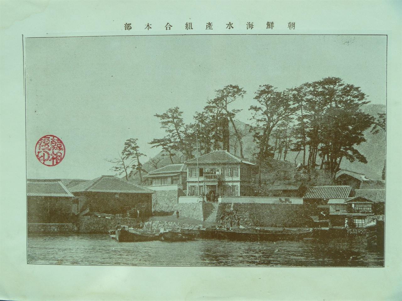 풀뿌리 식민 정책의 온상 조선해통어조합(1899) 1903년 조선해수산조합으로 명칭이 바뀌었다.
