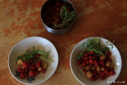 해마다 봄이면 누리는, 봄철 밥상. 들딸기하고 나물 한 줌
