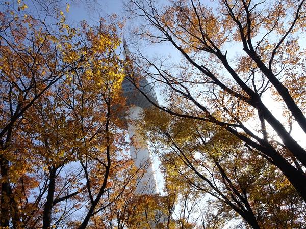 김순자 / 원존재와의 대면 / 남산 가을나들이.