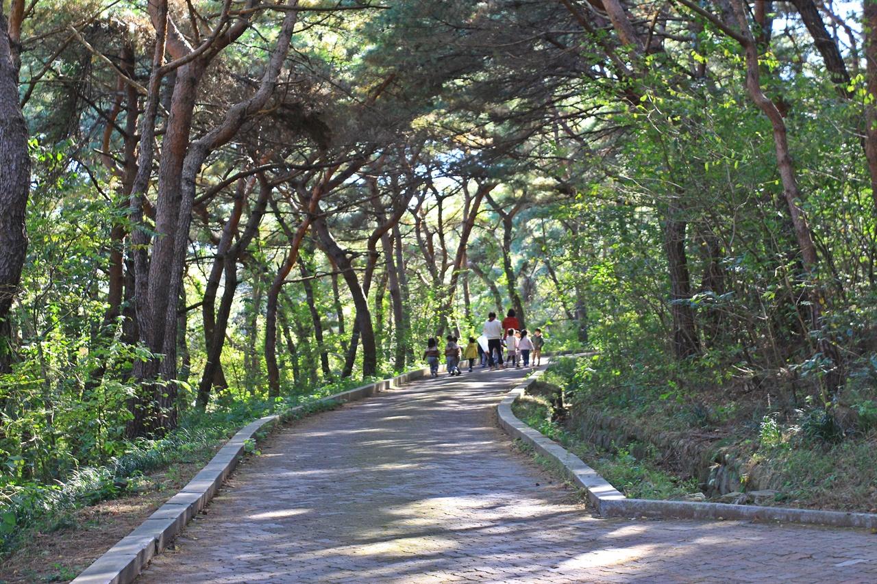 경주 흥무공원 주변 산책로에서 선생님과 함께 즐거운 시간을 보내는 어린이집 유아들 모습