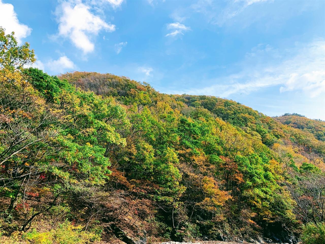 화려한 가을이 펼쳐져 있습니다.  가을하늘 아래로 울긋불긋 각양 각색의 색깔이 펼쳐진 가을산이 화려합니다.
