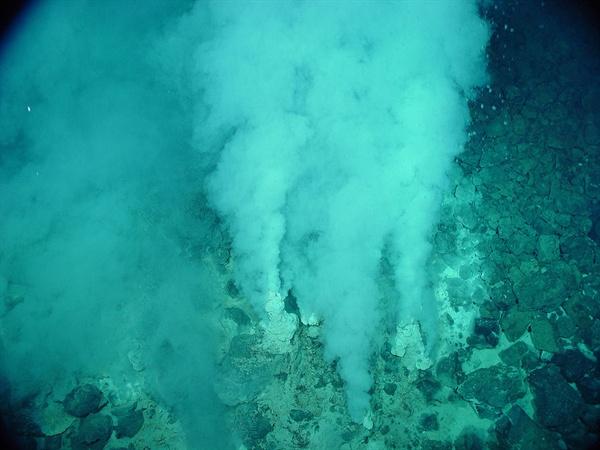해저의 열수공. 뜨거운 물이 올라오는 곳으로 일부 해저 생물들의 보금자리 역할을 하기도 한다.