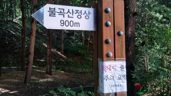 멧돼지주의   등산로 주변으로 멧돼지 출몰을 경고하는 안내가 붙어있다.