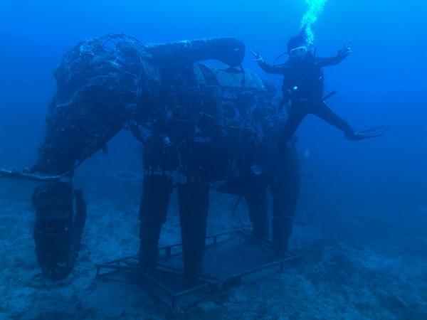 수심 28m에 있는 코끼리 형상 조형물 앞에서.