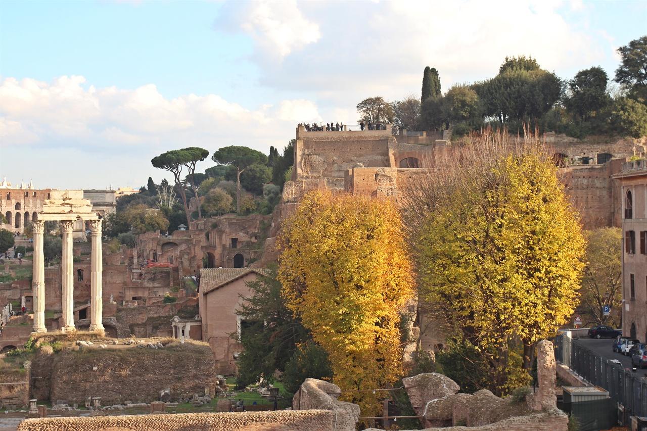 포로 로마노 팔라티노 언덕 전망대 모습