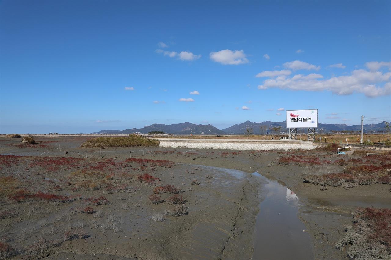 전북 고창군 심원면 두어리 해변의 폐 양식장이 갯벌로 복원되고 있다