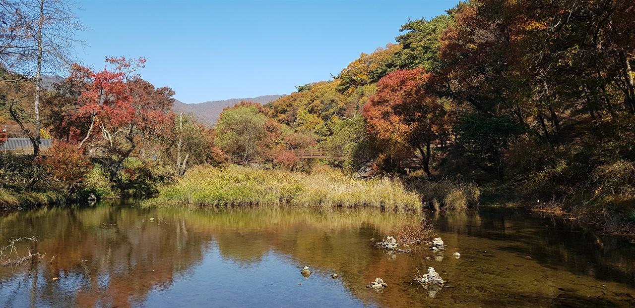 희지천   삭발바위가 있는 희지천에도 가을이 내려앉았다.