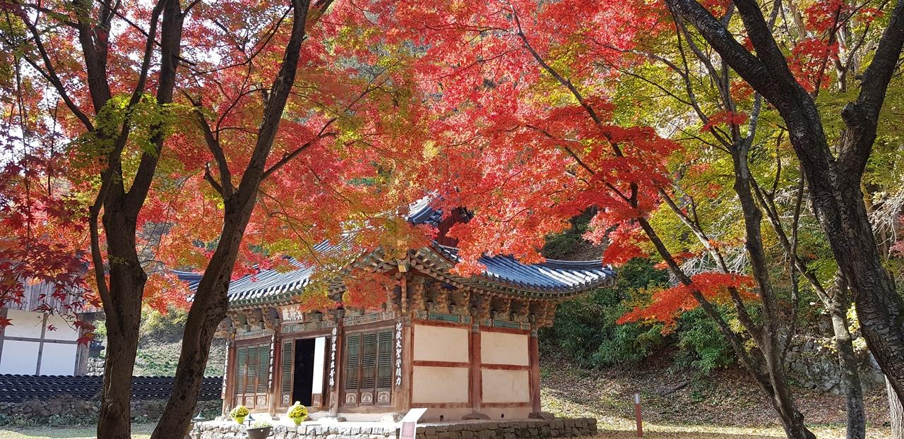명부전   춘마곡의 초록은 간데없고 명부전 앞마당에 울긋불긋 단풍이 바람에 흔들리고 있다.