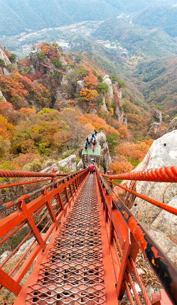 어질어질 삼선계단 겨우 한 사람이 지나갈 수 있을 정도로 좁고 높은 계단이다.