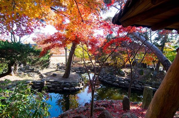 정원에 들어서면 방문객을 반기는 것은 열십자 모양으로 판 연지(蓮池)와 거기 떠 있는 단풍잎, 그리고 하늘과 숲 그림자다.