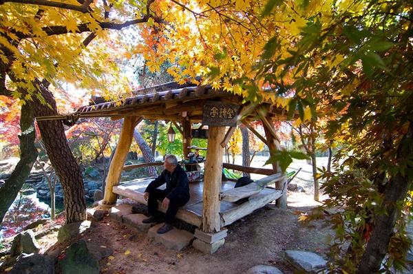 별당과 연지 사이에 있는, 시중에서 판매하는 원두막 모양의 정자는 생뚱맞을 법도 한데 지붕 위의 노란 단풍 덕분에 주변 풍경에 수더분하게 녹아들고 있었다.