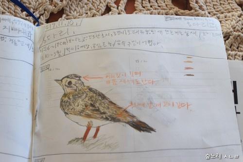 새하고 사귀는 첫걸음은 먼저 새를 가만히 바라보기. 다음은 새가 가까이 내려앉을 적에 섣불리 움직이지 않고서 기다리기. 사진기를 먼저 쥐어서 찍으려 하기보다는 두 눈으로 오래오래 지켜보면서 마음으로 담고, 마음으로 말을 걸기. 이러고 나서 새 도감을 펼쳐서 이름을 알아보기도 하고, 그림을 그린다면 한결 가까이 지낼 수 있다. 열두 살 어린이가 담은 새 그림.