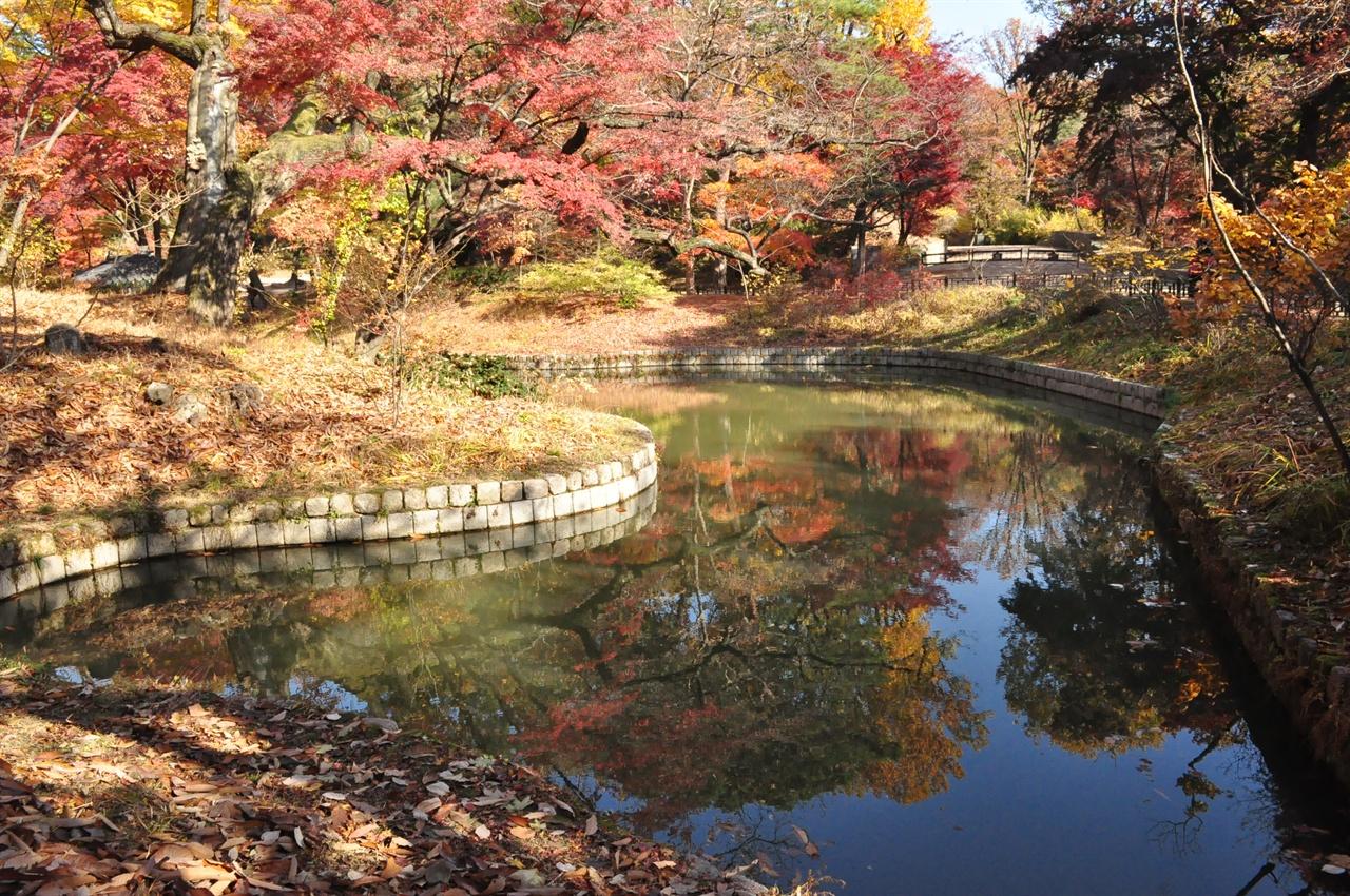 표주박형 연못이 한반도를 닮아 반도지(관람지)라 이름붙여진 연못. 연못에도 단풍이 물들었다.