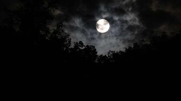 산등성이에 뜬 달  날씨가 흐려도 구름 사이로 뜨는 달을 기다렸다.