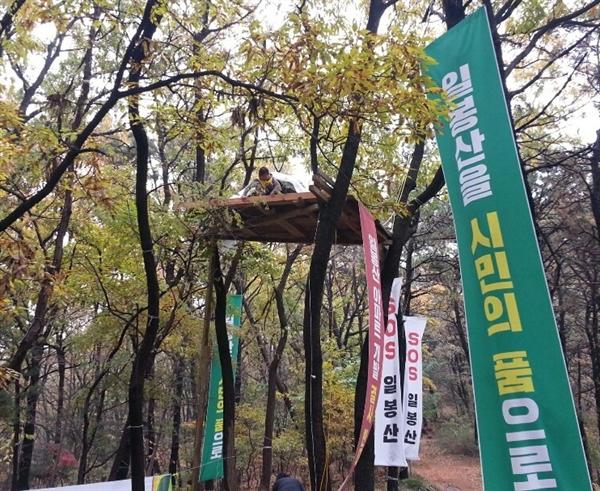 서상옥 천안아산환경운동연합 사무국장이 천안 일봉산 민간개발 특례사업 백지화를 요구하며 20일 현재 7일 째 일봉산 참나무 위에서 고공농성을 벌이고 있다.