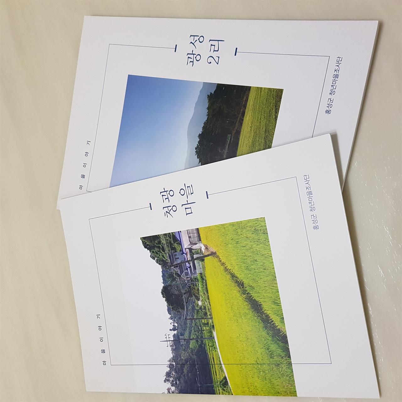 홍성군청년마을조사단이 발간한 마을이야기 책자. 홍성군내 330여개 마을 중 현재까지 30개의 마을조사가 완료됐다.