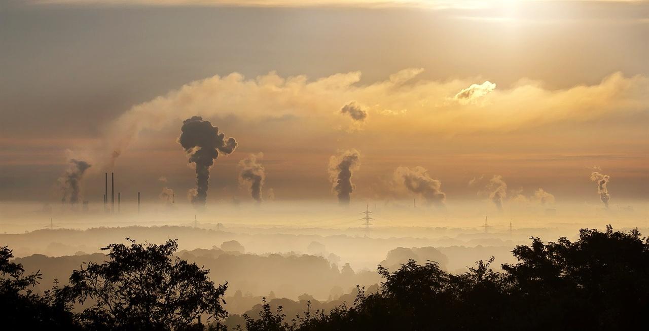 탄소세, 지구를 살릴까