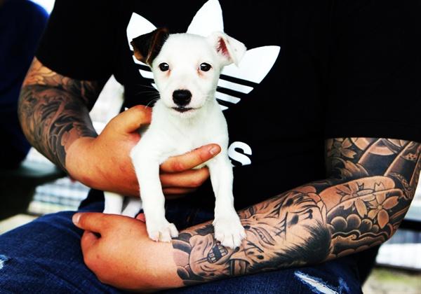 소년희망센터가 진행한 동물 매개치료 프로그램에 참여한 위기청소년이 애완견을 안고 있다.