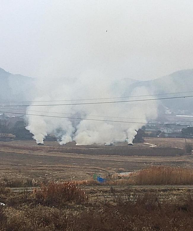 9일 오전 아산시 송악면 외암민속마을 주변 논 복판에서 연기가 치솟고 있다. 민속마을에서 초가지붕을 교체할 때 나온 폐 볏짚을 공동소각한 것으로 확인됐다.