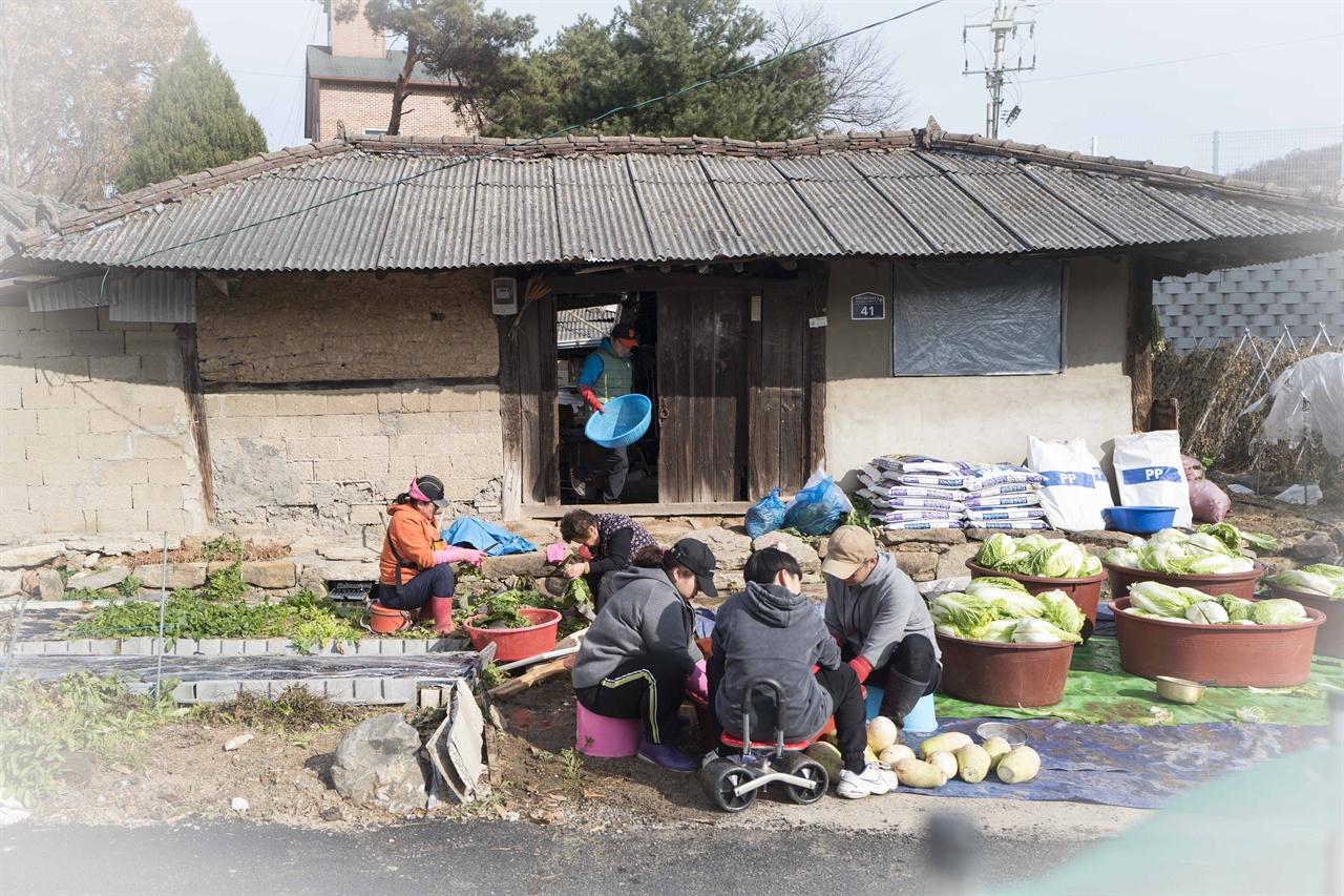 우리집 김장풍경   엄마가 아파트로 이사를 하면서 우리는 3년째 돌아가신 할머니가 사시던 시골집에서 김장을 한다.