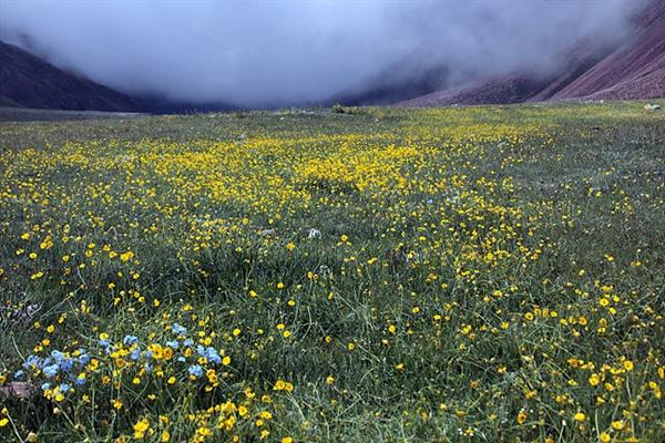 몽골 초원에 사막과 동물만 있을까? 때론 이같이 아름다운 광경을 만날 수 있다.