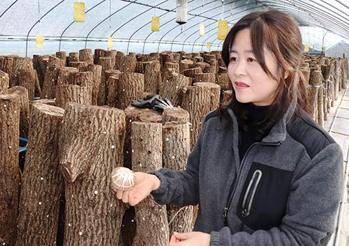 지리산천령표고농원 박미란 씨