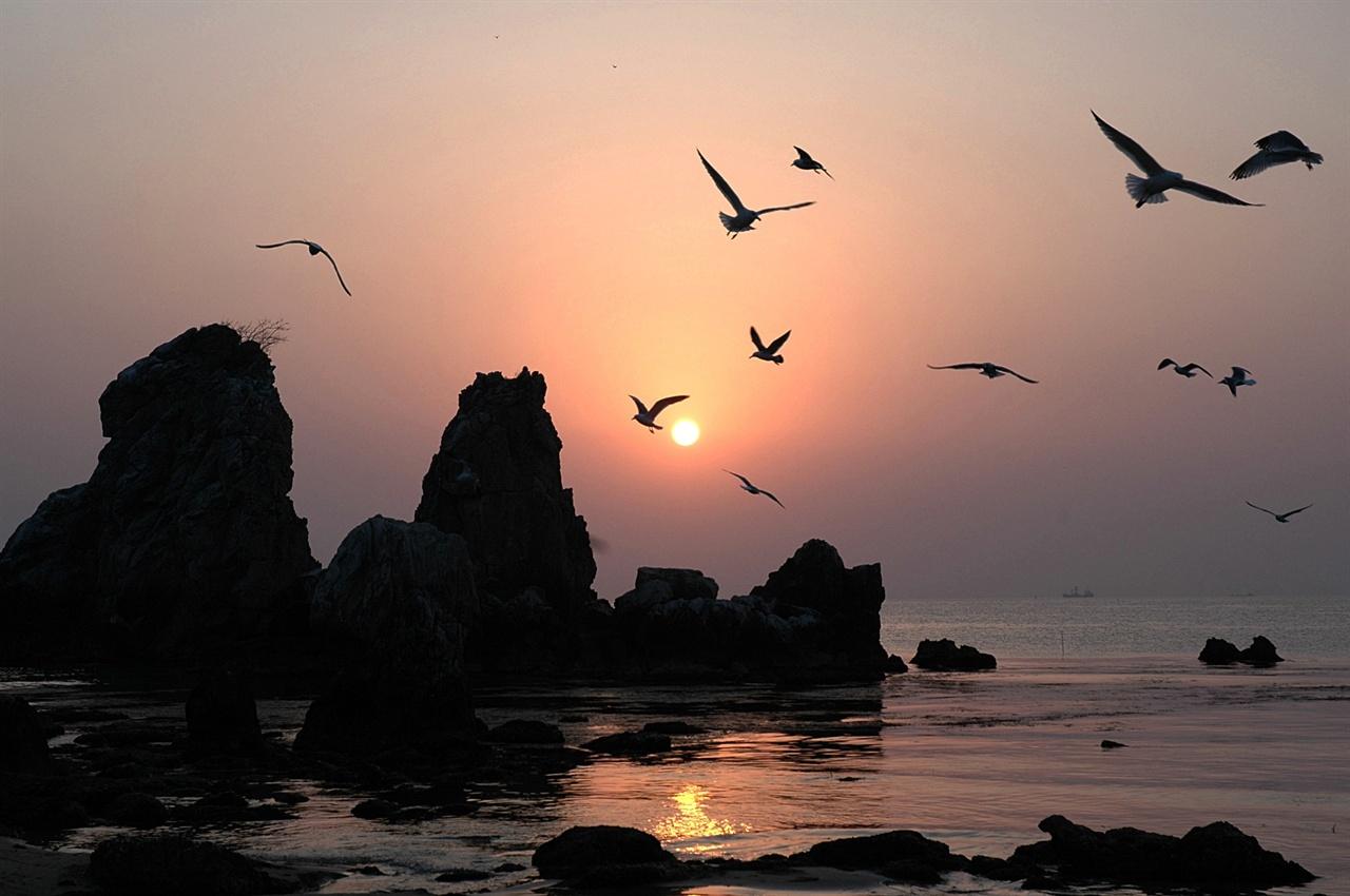 추암 일출 추암 일대의 기암군을 배경으로 한 일출은 그 어디에서도 아름다운 풍경을 이룬다.