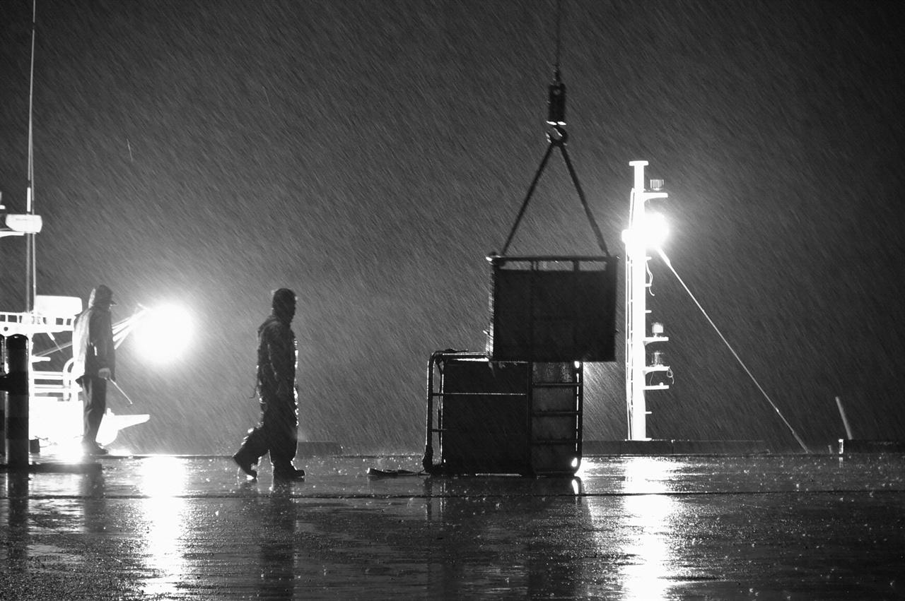 가는 빗줄기라도 겨울비였다 추운 새벽에 가늘지만 비가 내렸다. 비가 오더라도, 눈이 내리더라도 해야할 일은 마땅히 해야한다. 온몸으로 비를 맞으면서도 작업에 구슬땀을 흘리는 어민을 만났다.