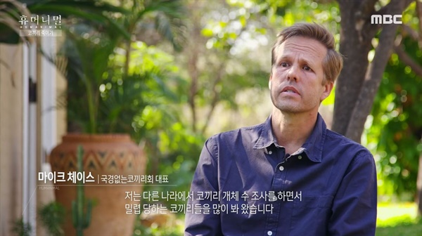 MBC <휴머니멀>의 한 장면