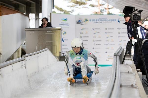지난달 21일 올림픽 슬라이딩 센터에서 열린 루지 아시아선수권대회.