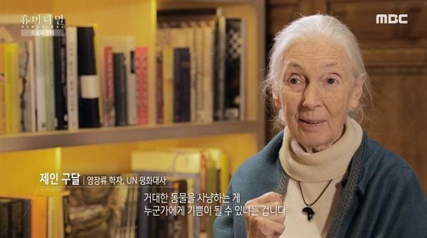 MBC 다큐멘터리 <휴머니멀>의 한 장면