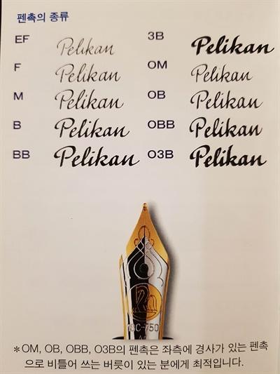 펠리칸의 펜촉 종류 구분(이해를 돕기 위한 캡처 사진임을 밝힙니다).
