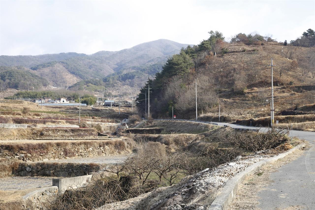 순천시 송광면 이읍마을에서 천자암으로 가는 길. 지나다니는 차도, 사람도 거의 없어 길을 혼자서 차지하는 호사를 누릴 수 있다.