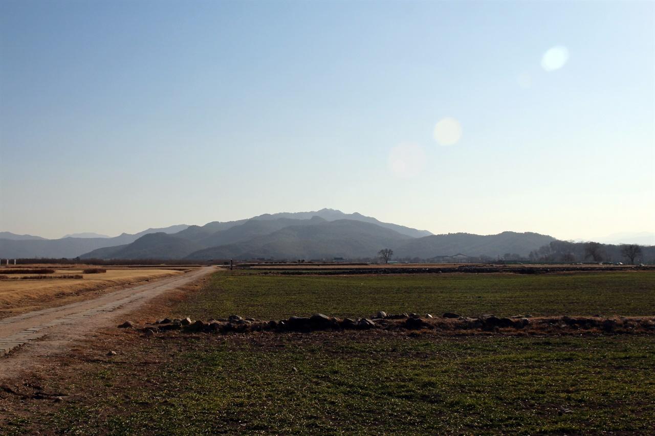 분황사 바로 앞에 있는 경주 황룡사지 모습.