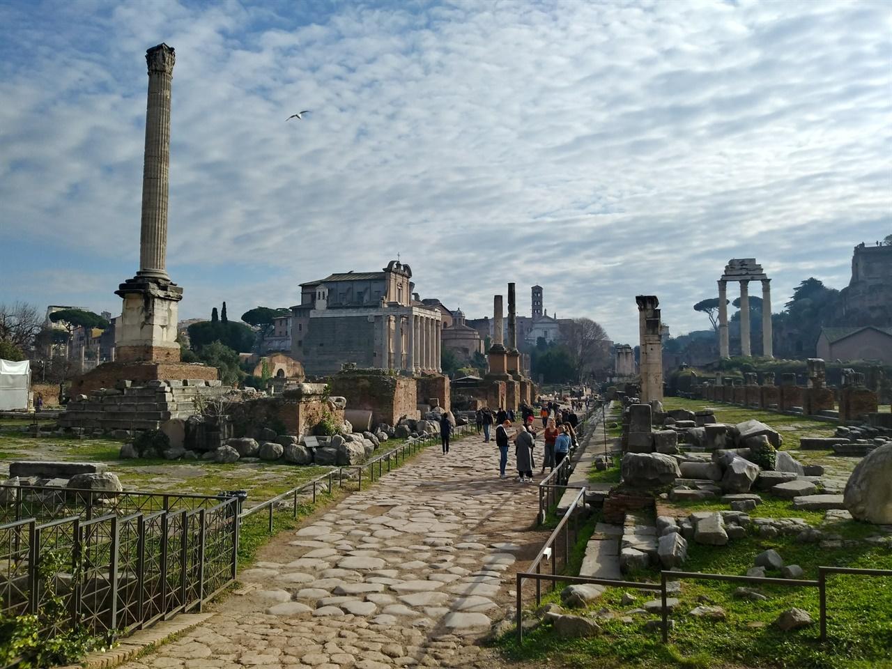 포로 로마노 전경 폐허에는 무궁무진한 이야기가 담겨 있다. 부서진 수많은 잔해 뒤로 저 멀리 콜로세오의 모습이 보인다.