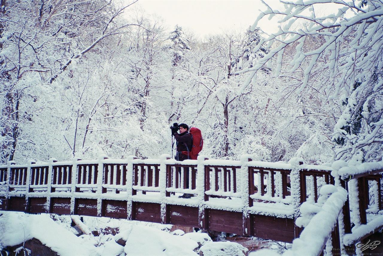 겨울왕국 (현장감독28/C200)계곡과 함께하는 길의 마지막. 산 중턱 아래에서는 볼 수 없는 겨울왕국이 시작되는 곳.