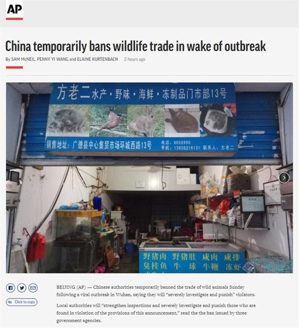중국 정부의 야생동물 거래 금지 공고를 보도하는 AP통신 갈무리.