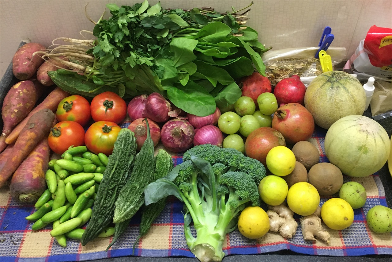 식재료 이곳에서 구할 수 있는 채소와 과일