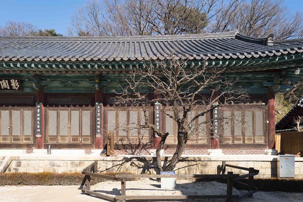 통도사 영각 앞 자장매   한국에서 가장 먼저 봄을 알린다는 수령 370년의 통도사 자장매 . 봄을 알리는 자장매를 보기 위해 이른 봄부터 전국에서 춘매꾼이 몰려든다. 2월 중순이며 벌써 꽃망울을 맺고 피기 시작한다.