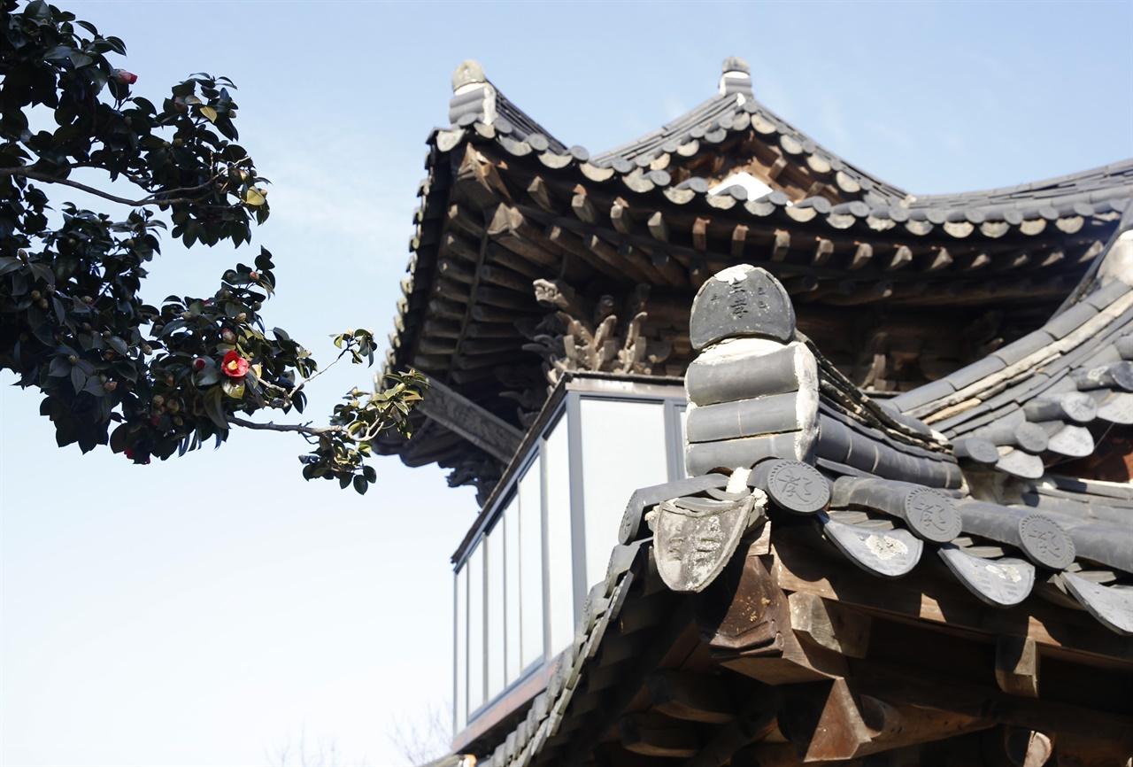 동백꽃과 어우러진 매간당 고택의 삼효문. 비바람으로부터 보호하려고 2층을 유리로 둘러쌌다. 안에는 이재면이 쓴 현판이 걸려 있다.